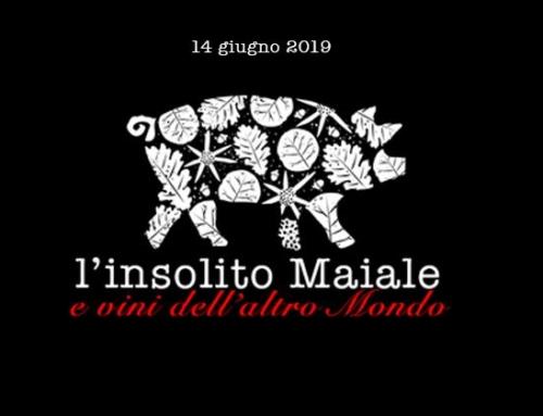 Venerdì 14 Giugno 2019    L'INSOLITO MAIALE E VINI DELL'ALTRO MONDO